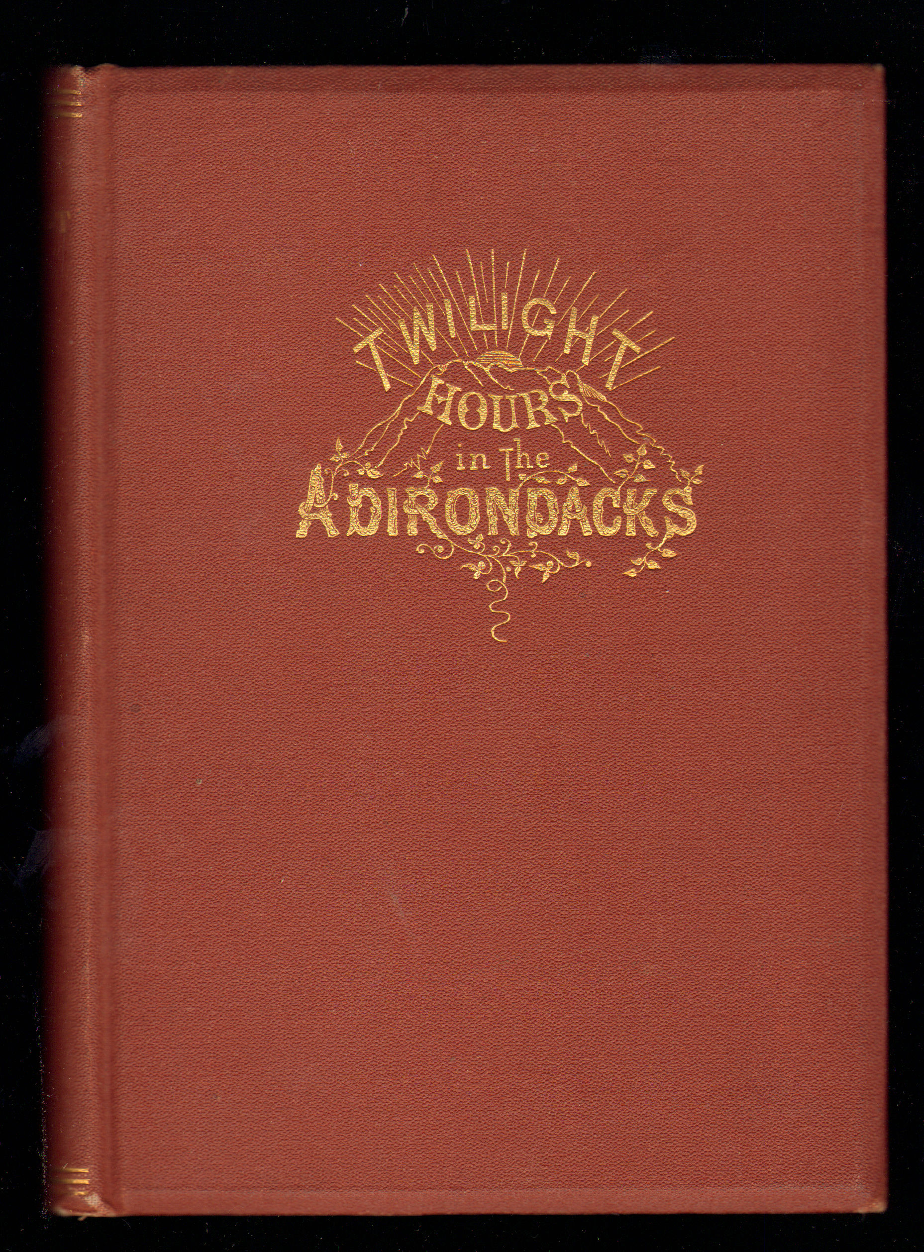 Image for Twilight Hours in the Adirondacks. The daily doings and several sayings of seven sober, social, scientific students in the Great Wilderness of Northern New York, variously versified in seven thousand seven hundred and seventy seven lines.
