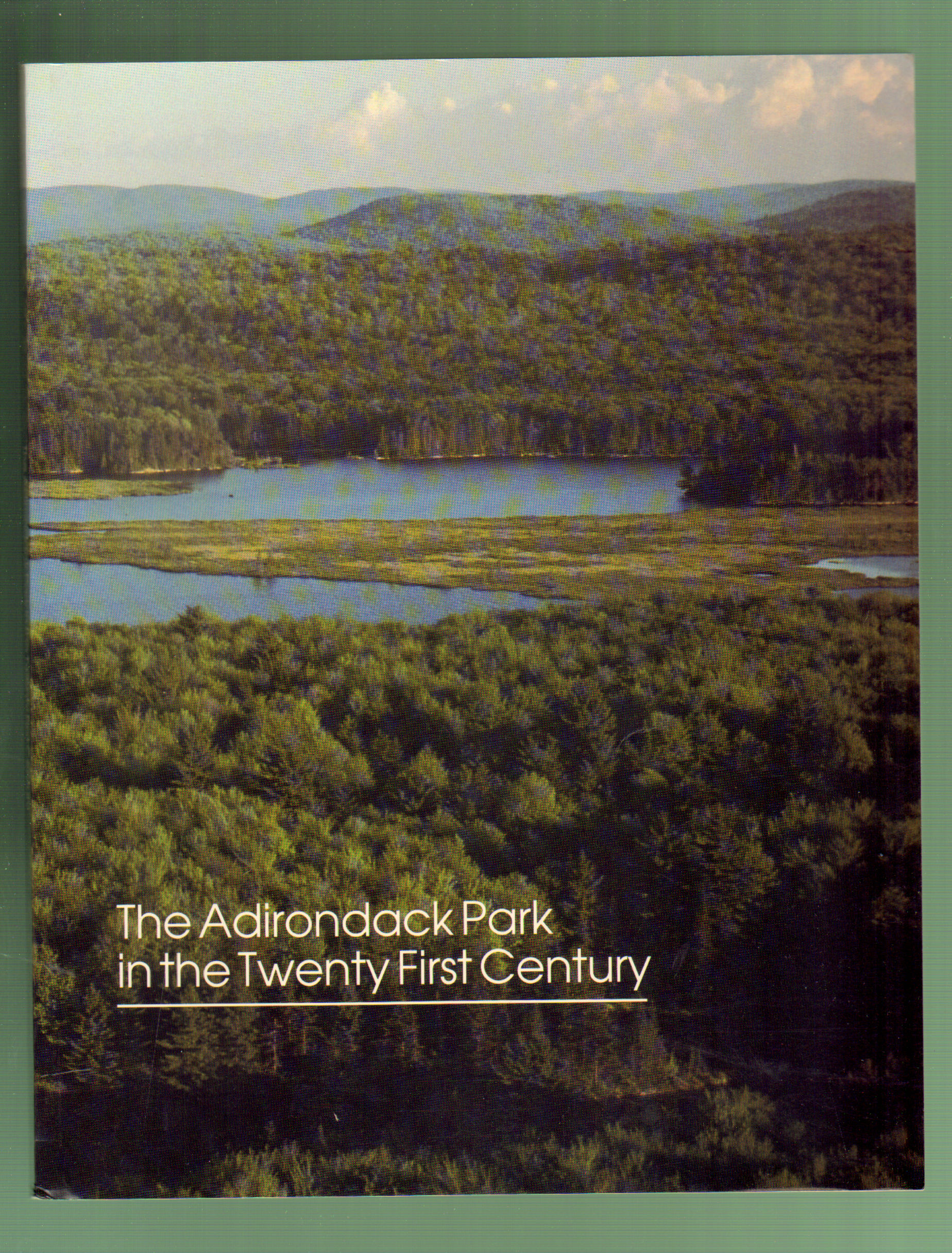 Image for The Adirondack Park in the Twenty-First Century